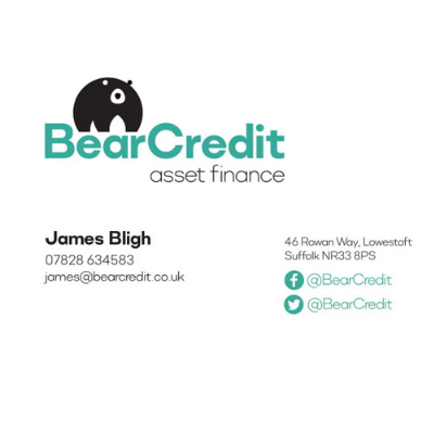 Bear Credit Business Card Metachick Marketing Stationery Design